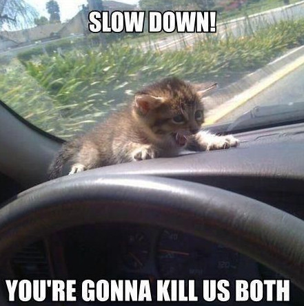 Slow-Down-You-Go-Too-Fast