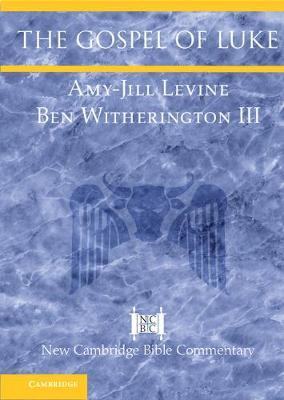 is there a doctor in the house witherington iii ben