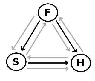 Swinburne's Social Trinitarian Theory, Part 3 – functional monotheism